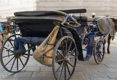 Hästdragen vagn i Florence Arkivfoto