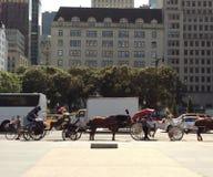 Hästdragna vagnar, Midtown, Manhattan, NYC, NY, USA Arkivbilder