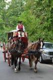 Hästdragna vagnsritter i Williamsburg, Virginia Royaltyfria Bilder