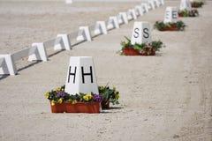 HästDressagecirklar Royaltyfri Fotografi