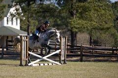 hästen hoppar över banhoppningryttaren Royaltyfri Fotografi