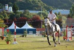 Hästen hoppar showmästerskapet Asturias Arkivfoton