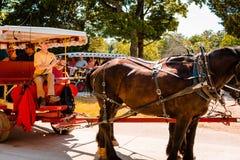 Hästen och barnvagnen turnerar Royaltyfri Bild