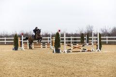 Hästhinderkurs och parkour Arkivbilder