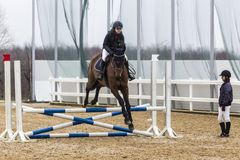 Hästhinderkurs och parkour Royaltyfri Fotografi