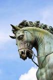 Hästhuvud (detaljen av statyn av Cosimo de 'Medici i Floren royaltyfri foto