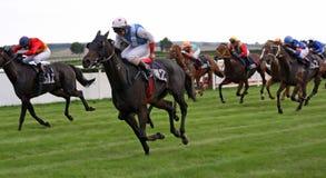 hästkapplöpning 01 Fotografering för Bildbyråer