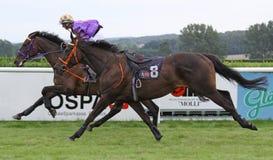 hästkapplöpning 06 Royaltyfri Foto