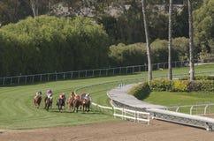 Hästkapplöpning Royaltyfri Bild