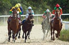 Hästkapplöpning. Arkivfoton