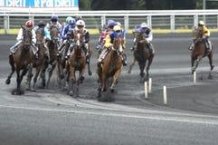 hästkapplöpning Royaltyfri Fotografi