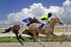 Hästkapplöpning för de bända ekarna arkivfoto