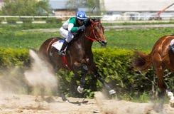 Hästkapplöpning för priset av arkivbilder