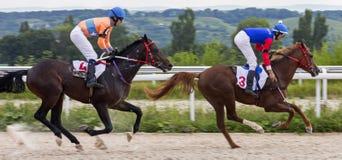 Hästkapplöpning för priset av Bolshoien Letni i Pyatigorsk arkivfoto