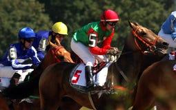 Hästkapplöpning för priset av Osennien arkivbilder