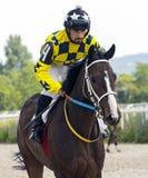 Hästkapplöpning för priset av Otkritien i Pyatigorsk Royaltyfri Foto