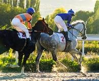 Hästkapplöpning för priset av Zakritia arkivbilder