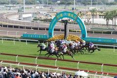 Hästkapplöpning i Hong Kong - Sha Tin Racecourse Fotografering för Bildbyråer