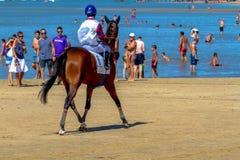 Hästkapplöpning på Sanlucar av Barrameda, Spanien, 2016 Royaltyfri Fotografi