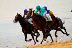 Hästkapplöpning på Sanlucar av Barrameda, Spanien, Augusti 2011 Arkivfoto