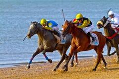Hästkapplöpning på Sanlucar av Barrameda, Spanien, Augusti 2011 Fotografering för Bildbyråer