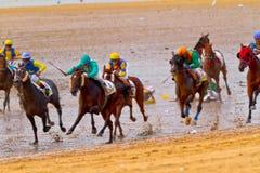 Hästkapplöpning på Sanlucar av Barrameda, Spanien, Augusti 2011 Arkivbild