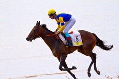 Hästkapplöpning på Sanlucar av Barrameda, Spanien, Augusti 2011 Arkivfoton