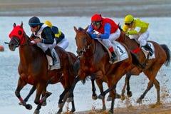 Hästkapplöpning på Sanlucar av Barrameda, Spanien, Augusti 2011 Royaltyfri Foto