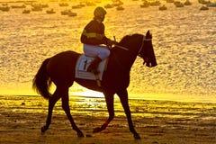 Hästkapplöpning på Sanlucar av Barrameda, Spanien, Augusti 2011 Arkivbilder