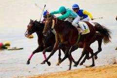 Hästkapplöpning på Sanlucar av Barrameda, Spanien, Augusti 2011 Royaltyfria Bilder