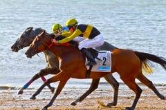 Hästkapplöpning på Sanlucar av Barrameda, Spanien, Augusti 2011 Royaltyfri Bild