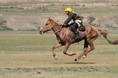 Hästkapplöpning under Naadam Royaltyfri Bild