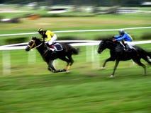 hästkapplöpningen sprintar Fotografering för Bildbyråer