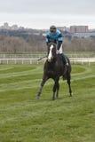 Hästkapplöpningfinalen rusar Konkurrenssport hippodrome Vinnare arkivbilder