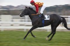 Hästkapplöpningfinalen rusar Konkurrenssport hippodrome Vinnare Mo arkivfoton
