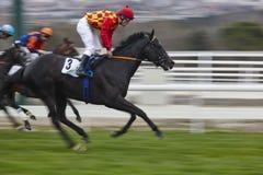 Hästkapplöpningfinalen rusar Konkurrenssport hippodrome Vinnare Sp arkivbild