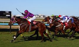 Hästkapplöpningfullföljande royaltyfria foton