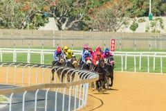 Hästkapplöpninghandling Royaltyfri Fotografi