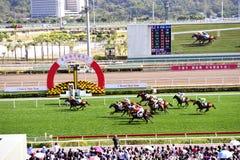 Hästkapplöpningkonkurrens Fotografering för Bildbyråer