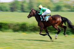 hästkapplöpningplats Royaltyfria Foton