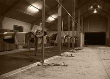 Hästkapplöpningstable Royaltyfri Bild