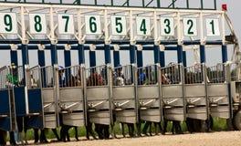 Hästkapplöpningstart Royaltyfria Foton