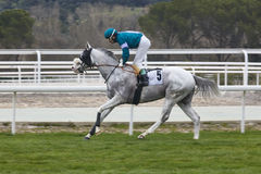 Hästkapplöpningutbildning Konkurrenssport hippodrome Hastighetsbackgr fotografering för bildbyråer