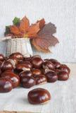 Hästkastanjer eller conkers på tabellen, korg med höstleav Royaltyfria Bilder