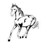 Hästkontur arkivfoto