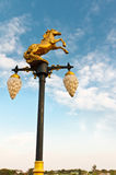 Hästlampa Fotografering för Bildbyråer