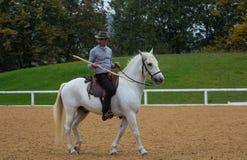 Hästlantgård, trevliga rena häststall Arkivbilder