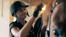 Hästman som borstar, nära övre En skicklig ryttarinna använder borsten för att ansa man för häst` s i ett stall arkivfilmer
