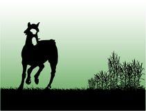 hästpassion stock illustrationer