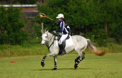 hästpolocrosseryttare Arkivbild
